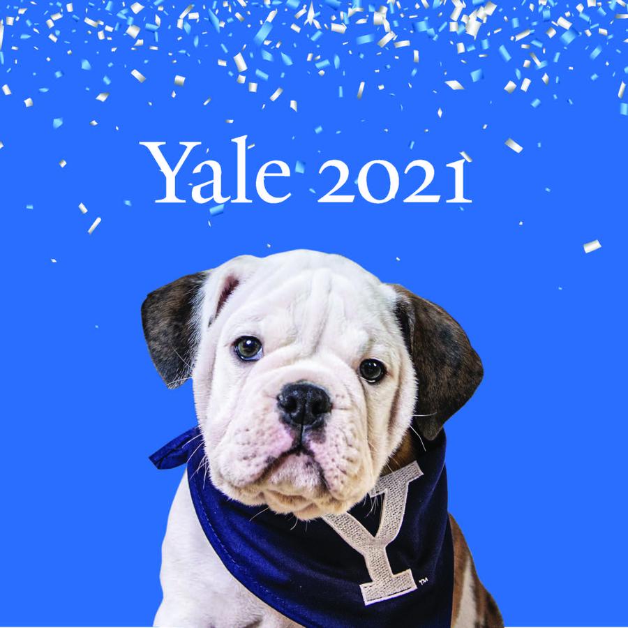 Order Yale 2021 Gear for Summer Celebrations